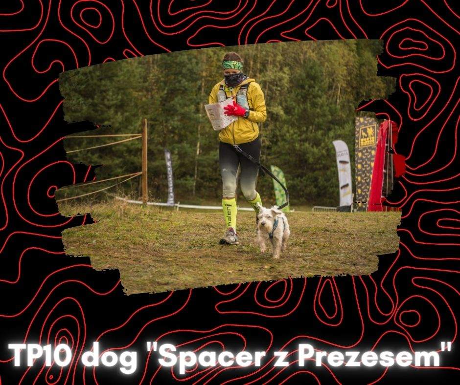 tp10 dog