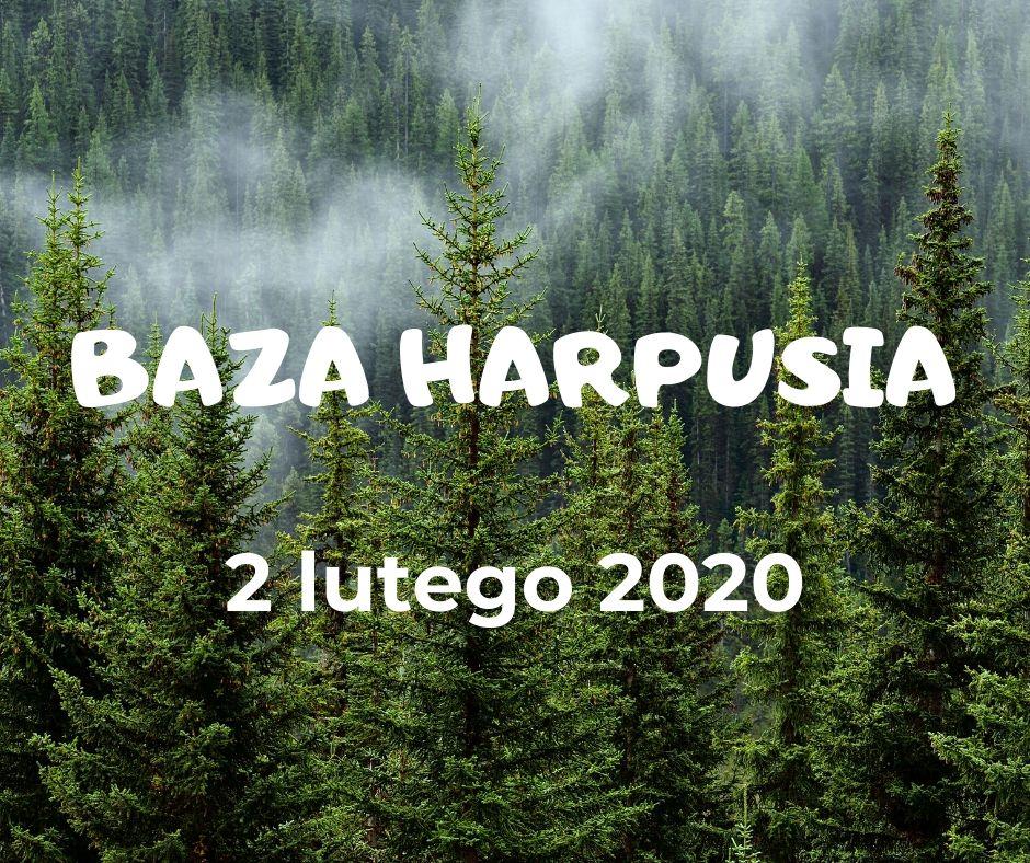 baza (2)
