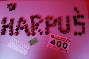 IMG-20201004-WA0043