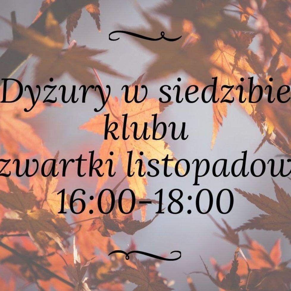 dyzury
